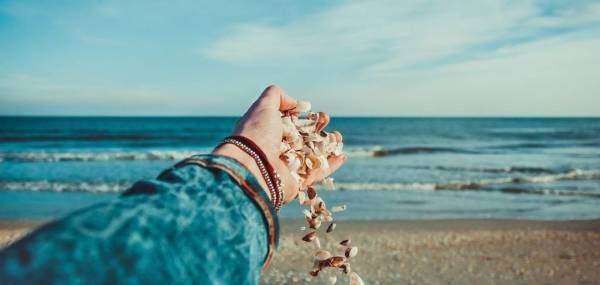 seashells in womans hand on the beach